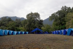 mandalawangi-nature-camp-114