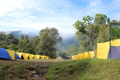 mandalawangi-nature-camp-15