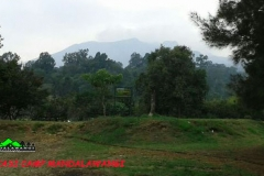 mandalawangi-nature-camp-42