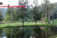 mandalawangi-nature-camp-47