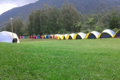mandalawangi-nature-camp-64